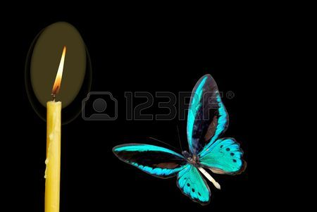 5922540-blue-butterfly-flying-to-fire-of-the-candle